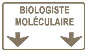 Sandrine, biologiste moléculaire