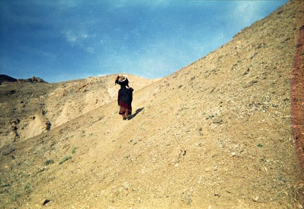 "Farida - ""Simplement Afghane"""
