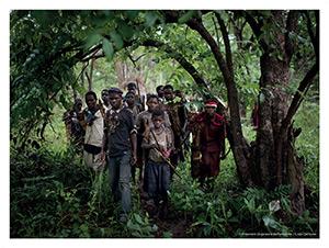 A 70 km de Kiambi – Les Pygmées du village de Luela chassent dans la forêt.